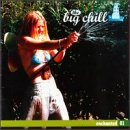 The Big Chill - Enchanted